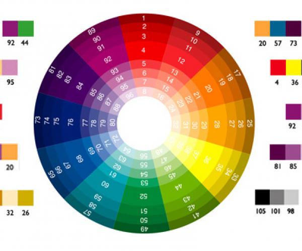 Những nguyên tắc chọn màu cho áo thun đồng phục